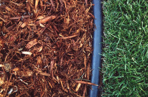 mulch-edge-grass_detail_150603